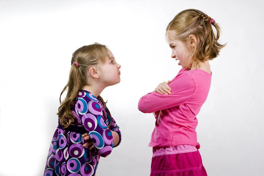 Curb the Criticism for Persuasion Success